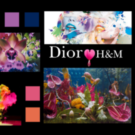Dior for H&M